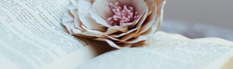 Vincenzo Trama - Fiori rosa, fiori di pesco, c'eri tuuuuuu