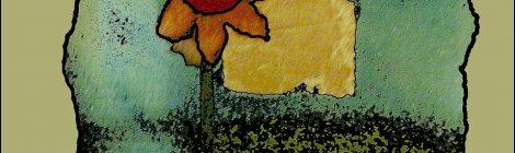 Patrizia Raveggi - Ditelo con i libri (i fiori già parlano da soli)