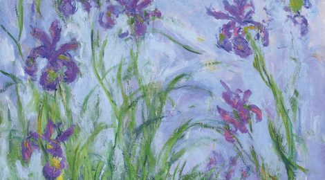 """L'iris di Monet"" di Nicola Nucci"